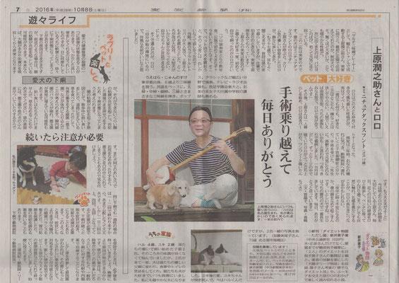 東京新聞 2016.10月