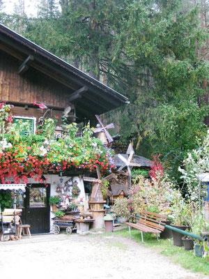 Ein kleines Hexenhaus mit gefühlten zehn Windmühlen
