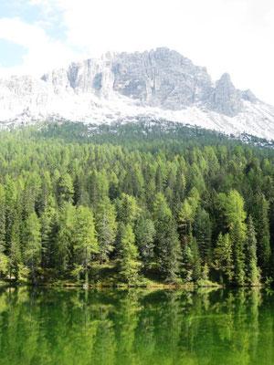 Der See hat ein wunderschönes Grün