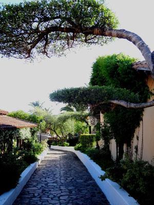 Die Wege zwischen den einzelnen Bungalows, die in Terrassenform angelegt sind