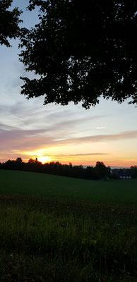 Sonnenaufgang in Regensburg