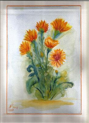 Bouquet sur fond humide sans dessin
