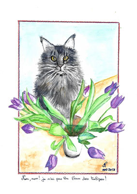 Chat Velours aquarelle dec 2017 donné à Mimi