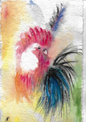 Coq aquarelle sur papier mouillé