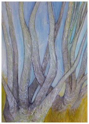 Birken II , 50 x 70 , 2013