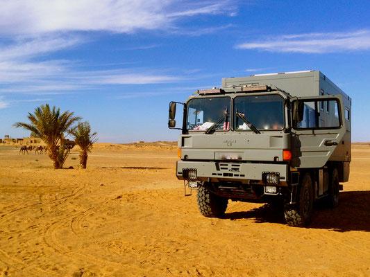 MAN-19.403 FALSX-Expeditionsmobil Allrad-Antrieb, Gfk-Wohnkabine die es auch als Leerkabine, Wohnkabine, Rohkabine bei Toe-Experience gibt. Nach Kundenwunsch mit KCT-Echtglasfenster und KCT-Dachluke.