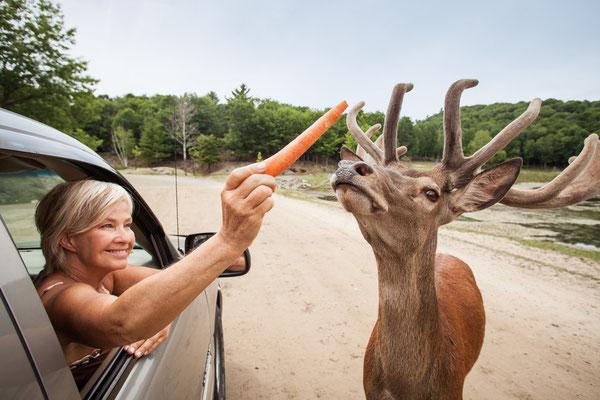 © Canadian Tourism Commission