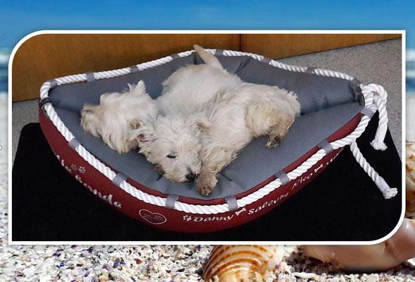 Hundebett mit glücklichem Besitzer