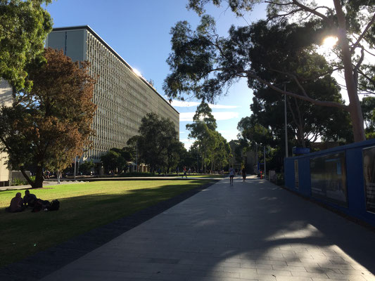 Campus Monash University