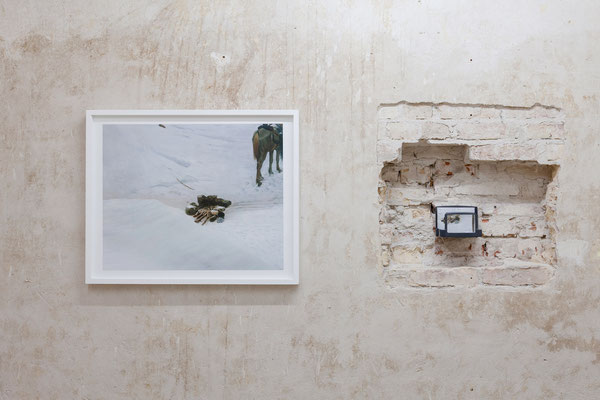 AUGE, Ausstellungsansicht, Raum IV mit Arbeiten von Thomas Fißler