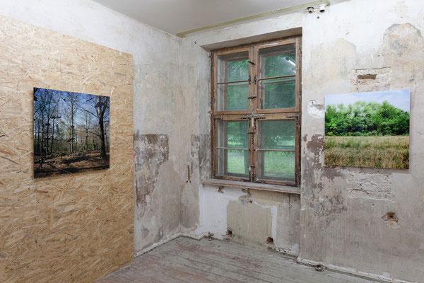 """Hadas Tapouchi, """"playfull forest"""", Volkspark Jungfernheide, Berlin und """"Stalag XVII"""", Krems, Österreich"""