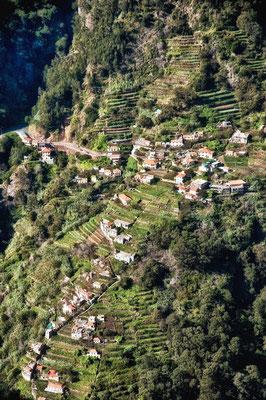 Nonnental Madeira 2