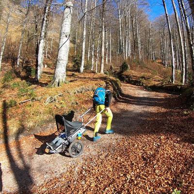 Hike Kid - Offroad Kinderwagen im Aufstieg