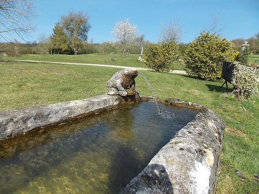 La grenouille de Morville près de Malaumont