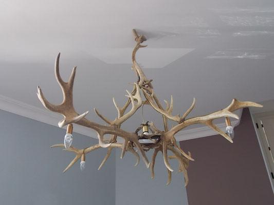 lustre en bois de cerf du gîte de Commercy