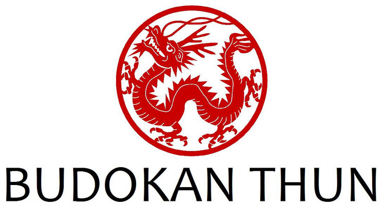 Drachen-Logo für ein Kampfkunst-Zentrum