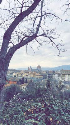 Panorama de Florence - Panorama di Firenze