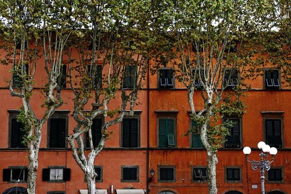 Lucca - Italien