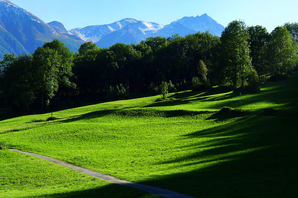 Fiesch - Schweizi