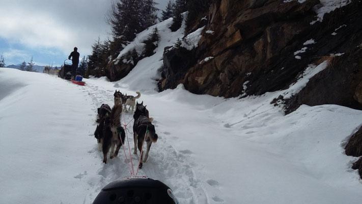 Mit voll bepackten Schlitten rauf auf die Alp...