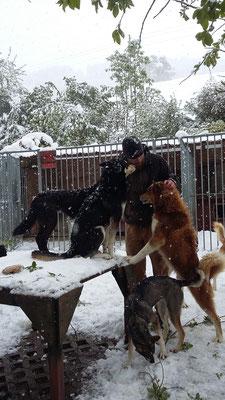Lagebesprechung zuhause, alle sind sich einige, auf in den Schnee!