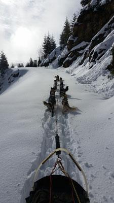 Private Tour,  hartes Arbeiten im nassen Schnee...