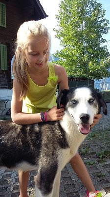 Zwingerbesuch: Die Hunde freuen sich immer wieder über liebe Gäste, die ganz viel Streicheleinheiten mitbringen