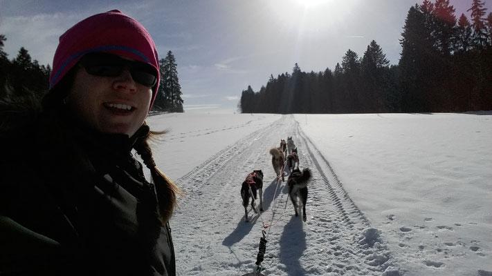 Herrlich, der schön präparierte Trail, da können die Hundis mal schön Gas geben!