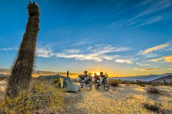 Desert Camp | Wüstencamp