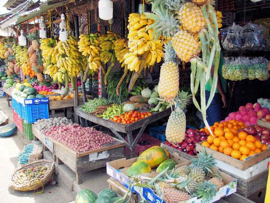 Frische Früchte - vitaminreiche Farbenpracht