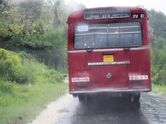 Wegbereiter - im Regen war ich froh über den vorausfahrenden Bus