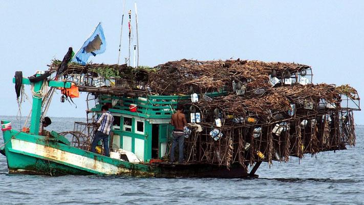 Überladen - Fischreusen auf Fischerboot
