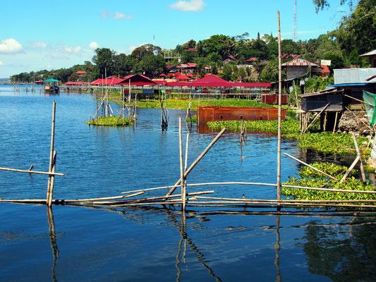 Sightseeing mit Steven - Fischzucht  am Danau Tondano.
