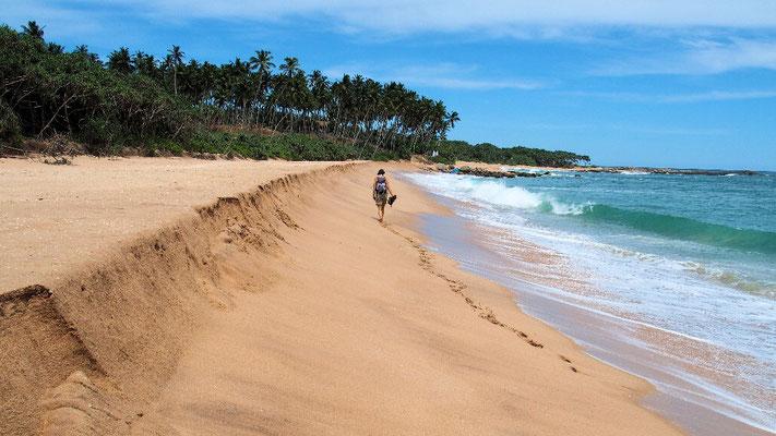 Am Rekawa Beach finden sich die Spuren ...