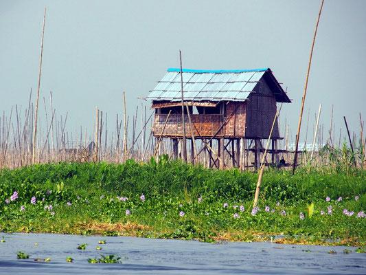 ...schwimmenden Gärten sammeln und in Häusern auf Pfählen wohnen