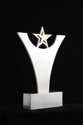 La distinction 12''haut x 10'' large, aluminium, laiton, 2011, trophée pour le gala.