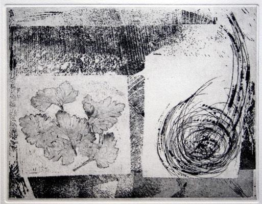 NC001-03 / formato cm 50 x 35 (formato matrice: cm 25 x 20)