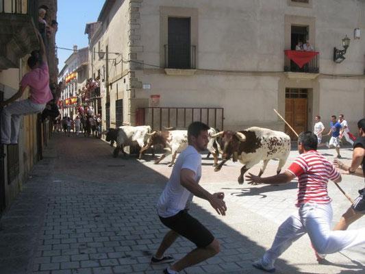 Fiestas de San Juan en Coria