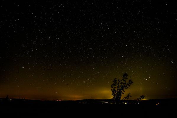 sternenklare Nacht im Vogelsberg