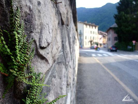 (Thônes, Haute-Savoie) 07/2012 Finepix-f100fd
