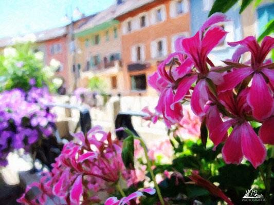 (Faverges, Haute-Savoie) 07/2012 Finepix-f100fd