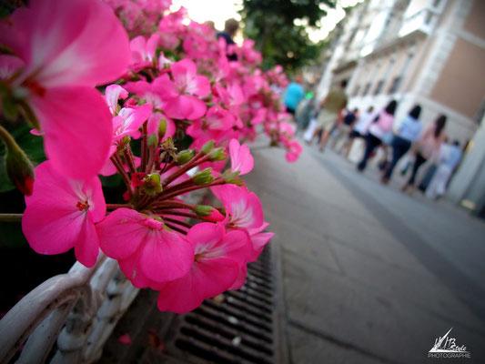 """So far away (Santander, Espagne) 08/2012 Finepix-f100fd"
