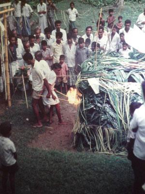 Reisebild Sri Lanka