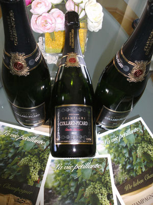 Champagner Verkostung durch la viepetillante