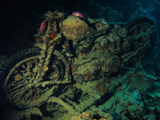 SS Thistlegorm Frachtschiff GB, Red Sea