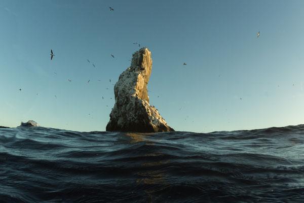 Roca Bartida