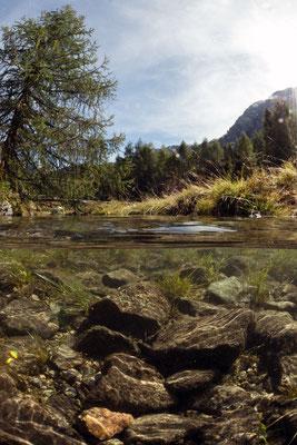 Albulapass, Auslauf des Palpuognasee
