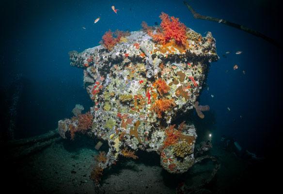 SS Thistlegorm, Red Sea