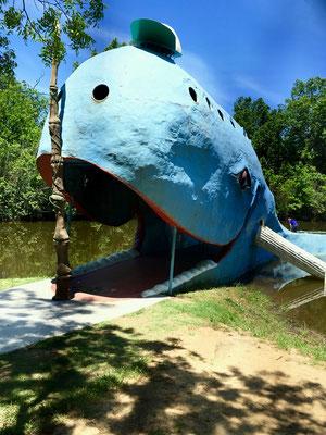 Blue Wahle, Catoosa Oklahoma