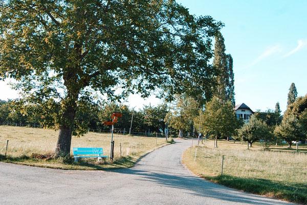 Kreuzung mit Wegweiser auf dem Ebnet